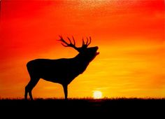 Elk At Sunset Painting