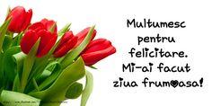 Multumesc pentru felicitare. Mi-ai facut ziua frumoasa! Smiley, Good Morning, Happy Birthday, Buen Dia, Happy Brithday, Emoticon, Bonjour, Urari La Multi Ani, Bom Dia