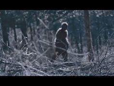 The Clearest Images of Bigfoot Ever Captured (Compilation Pt. 22)