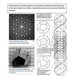 The Platonic Solids (dodecahedron and icosahedron) share their structure not only with crystals but also with human DNA as shown in the example.