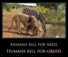 So true!  Animals kill out of need never out of greed.