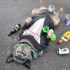 Mardi Gras is over