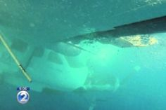Wreckage of a Cessna Caravan in the Pacific Ocean off the coast of Hawaii. This is very interesting article connecting to Obama....must read