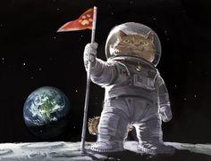 chegou no espaço? miau?
