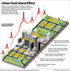 The urban heat island is an effect caused in cities. Heat gets trapped in these cities and is caused primarily from pollution. As a result, more cooling systems are needed, which add pollution to the heat. Sustainable City, Sustainable Architecture, Ap Environmental Science, Urban Heat Island, Geography For Kids, Eco City, Cool Roof, Earth Science, Science
