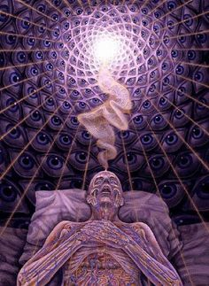 DMT..... Looking at life in a different perspective