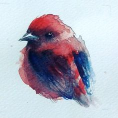 """Red bird""  Watercolor on paper"