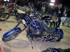 Bulldog 2010