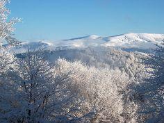 Der Carev Vrv ist einer der höchsten Berge des Osogovo-Gebirges. Er liegt südöstlich der Stadt Kriva Palanka nahe der Grenze zu Bulgarien. // Carev Vrv Osogovo Macedonia ◆Mazedonien – Wikipedia http://de.wikipedia.org/wiki/Mazedonien #Macedonia