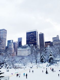 New York City Feelings - Wollman Rink, Central Park #nyc