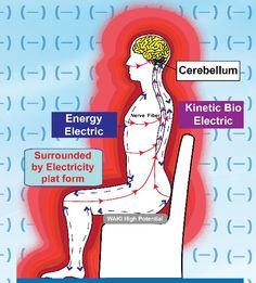 bio-electric_body.jpg 541×600 pixels