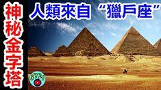 """埃及金字塔真實作用曝光!可能是外星人的""""聯絡站"""",人類或許起源獵戶座! Movies, Movie Posters, Films, Film Poster, Cinema, Movie, Film, Movie Quotes, Movie Theater"""