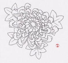Flower Tattoo Flash   chrysanthemum flower flower tattoos for girls