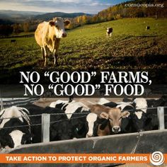 The FDA is set to force some of the nation's safest organic farms out of business! Take action: http://www.cornucopia.org/food-safety