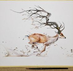 Deer Watercolor Painting by Luqman Reza Mulyono Watercolor Images, Watercolor Animals, Watercolor Paintings, Art And Illustration, Tattoo Aquarelle, Animal Drawings, Art Drawings, Deer Art, Stag Deer