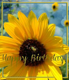 Happy birthday - Happy Birthday Funny - Funny Birthday meme - - Happy birthday More The post Happy birthday appeared first on Gag Dad. Happy Birthday Friend, Happy Birthday Messages, Happy Birthday Greetings, Sister Birthday, Birthday Posts, Birthday Love, Birthday Quotes, Funny Birthday, Happy Birthday Sunflower