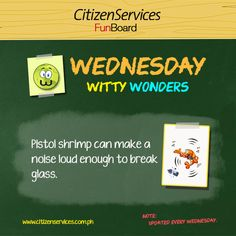 Witty Wonders is a collection of wonderful facts from around the world. Once in a while, we stumble upon these trivia and we have compiled them for your appreciation and additional knowledge.