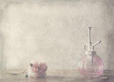 by Delphine Devos