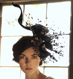 Black Peacock, Jane Taylor