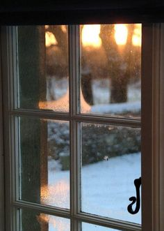 snowy window