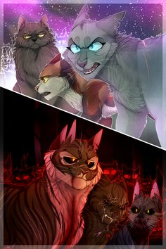 WAR by ninetail-fox.deviantart.com on @DeviantArt Beautiful picture of StarClan and the Dark Forest.