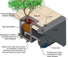 tree box filter - Google Search