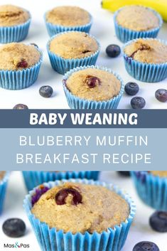 Your baby will love these soft and sweet blueberry oatmeal muffins, and they're the perfect baby led weaning breakfast or snack! Made with no sugar or flour, these healthy blueberry muffins are great when you need a finger food for your baby or toddler that's easy to make ahead and grab anytime you need them. #toddlersnacks #babymuffins #blueberryoatmealmuffins #BLWbreakfast Blueberry Muffins For Baby, Baby Muffins, Breakfast Muffins, Blue Berry Muffins, Breakfast Recipes, Baby Led Weaning Breakfast, Baby Weaning, Banana And Egg, Toddler Snacks