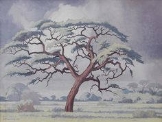 (n/a) Jacob Hendrik Pierneef (South African, Camelthorn tree, Kalahari x 61 cm. x 24 in. African Paintings, Tree Paintings, Bonsai Art, South African Artists, Minimalist Art, Tree Art, Famous Artists, Pop Art, Moose Art