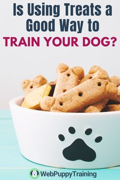 Dog training can be done in several ways and  one of them is using the proper tools. Learn if treats dog training is an effective way to train your dog. #dogtreattraining #dogtrainingtreats Dog Training Treats, Puppy Training Tips, Training Your Dog, Potty Training, Food Allergy Symptoms, Food Allergies, Why Dogs Lick, Foods Dogs Can Eat, Best Puppy Food