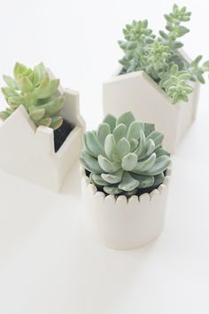 Whites, straight lines and simple designs. These little, yet bold, clay  terrariums add a touch of green to your home with a hint of Scandinavian  design. The natural colour of the clay and almost childish lines work  wonders without trying too hard (literally). An easy DIY for upcoming rainy  f