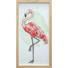Standing Flamingo Framed Print  at Joss and Main
