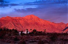 Sunrise - Anza Borrego, California