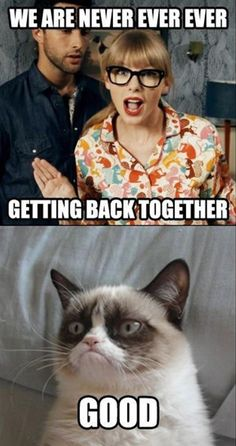 We are never ever getting back together.... Good - Grumpy Cat