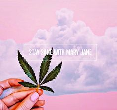Wallpaper iphone trippy awesome posts 64 ideas for 2019 Stoner Quotes, Weed Quotes, Weed Memes, Stoner Art, Weed Humor, 420 Quotes, Marijuana Art, Cannabis, Medical Marijuana