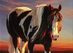 Painting By Numbers DIY Dropshipping A fat white-brown horse Animal Canvas Wedding Decoration Art picture Gift Painted Horses, Horse Pictures, Art Pictures, Horse Artwork, Horse Paintings, Indian Horses, West Art, Painted Pony, Horse Drawings