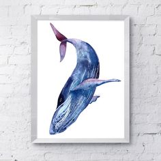 Blue humpback whale watercolor wall art hanging sea ocean animal inspired painting from polka dot whale studio https://www.etsy.com/listing/235514226/purple-whale-art-blue-whale-painting