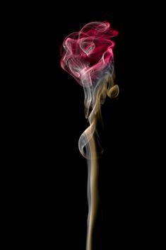 Art:Wonderful Examples Of Inspirational Smoke Photography Smoke Art. This rose is an actual image of smoke - the only change is the colour added by Photoshop. Rauch Fotografie, Art Fractal, Smoking Images, Art Beauté, Zen Art, Smoke Photography, Photoshop Photography, Creative Photography, Newborn Photography