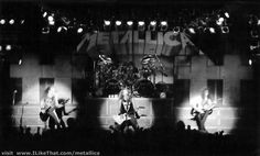 Metallica Cliff's Last Show ...somebody on the internet guessed Cliff was INTP...that would be cool if he was...