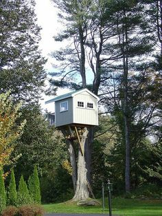 Fancy Tree House - painted and everything.