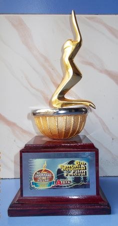 Best music director award 2015 from Jharkhand cine awards AISFA (Film: Hatboyla)