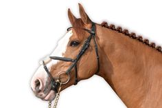 New for spring/summer this anatomic headpiece from Jump'in is beautifully crafted from English leather with robust stainless steel buckles. This bridle features a figure 8 noseband, round browband and rubber reins. Equestrian Supplies, Horse Bridle, Headpiece, Horses, Leather, Spring Summer, English, Animals, Stainless Steel