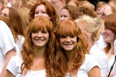 facts about red-heads: In today's world, only about 2% of people are redheaded. They have some of the very oldest genes on the planet, originally from East Asia.
