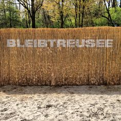 Wasserski-Anlage Bleibtreusee in Hürth/Brühl bei Köln. Nice!
