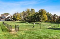 We love our 4-legged residents and they're sure to love frolicking around our Bark Park. #PetFriendly #Amenities #ReNewJordanCreek #Apartments West Des Moines, Sidewalk, Tours, Community, Park, Apartments, Side Walkway, Walkway, Parks