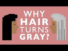 Why Your Hair Will Turn Gray Why Does Hair Turn Gray with Old Age? By: Life Noggin.