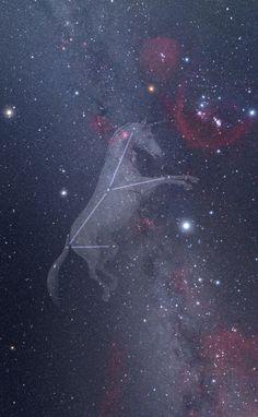 Unicorn Constellation on Star Guide App