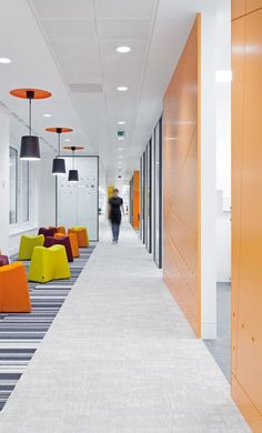 carpeting office bright