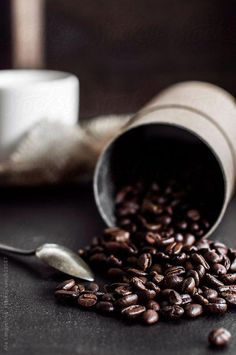 Looking for for ideas for good morning coffee?Browse around this site for cool good morning coffee ideas. These hilarious quotes will bring you joy. Coffee Type, Best Coffee, My Coffee, Coffee Drinks, Coffee Shop, Coffee Menu, Coffee Tables, Coffee Gif, Coffee Maker