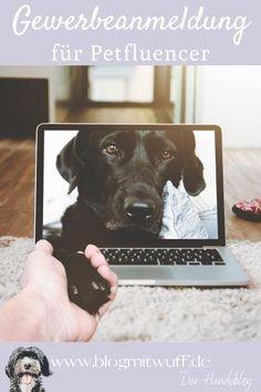 Heute eröffnen wir eine neue Rubrik im Blog: ℙ Instagram Tips, Blog Tips, Social Media, Community, Animals, Dog Accessories, Dog Owners, Animales, Animaux