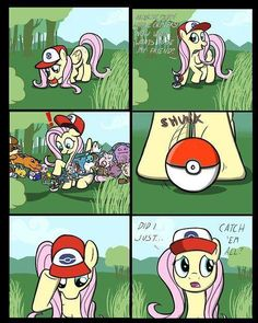 Fluttershy knows whats up